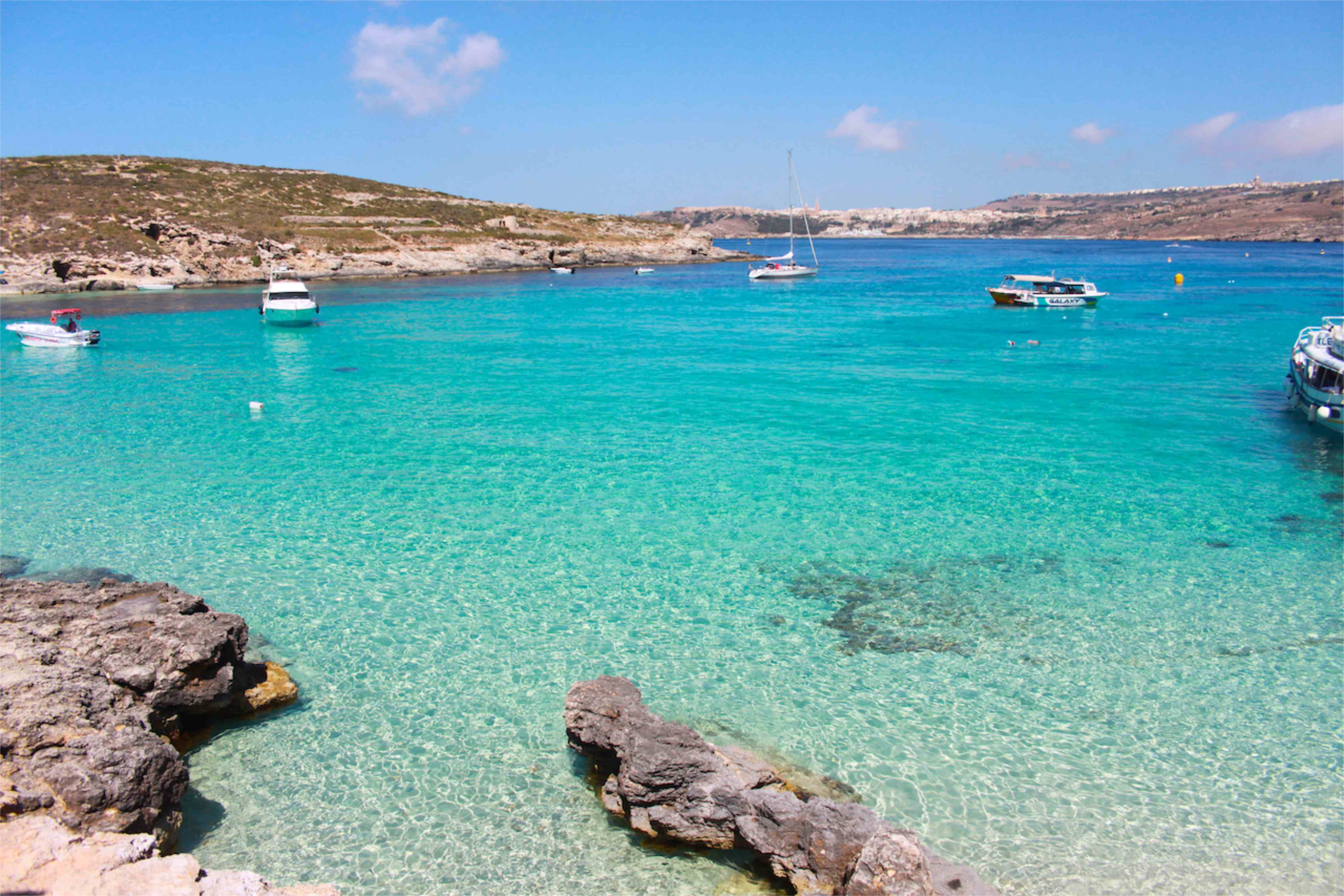 Malta Betting Jobs